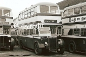 Birmingham CT No. 2313 JOJ313