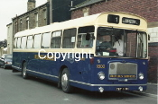 Busways No. 1802 TRY118H (Blue/cream)