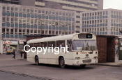 Ford OGR654P - orig. Trimdon MS (o/s)