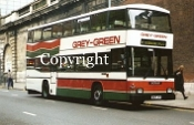 Grey Green No. 107 E107JYV
