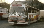 Ivy Coaches EJX858Y
