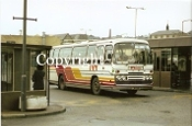 Ivy Coaches LWY90P