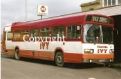 Ivy Coaches NFM828M (o/s)