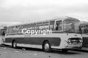 Greyhound (Arbroath) BGB634B