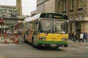 Yorkshire Terrier (T) No. 1 TCY735M - orig. South Wales (o/s 25)