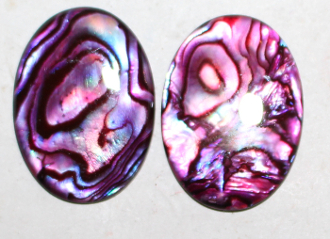 Abalone (red) 40x30mm cabochon
