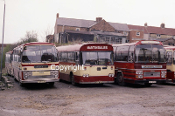 Martindale's yard at Ferryhill 1983