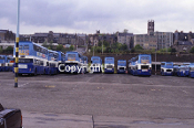 Tayside RC Depot view May 1981 - Bus rears